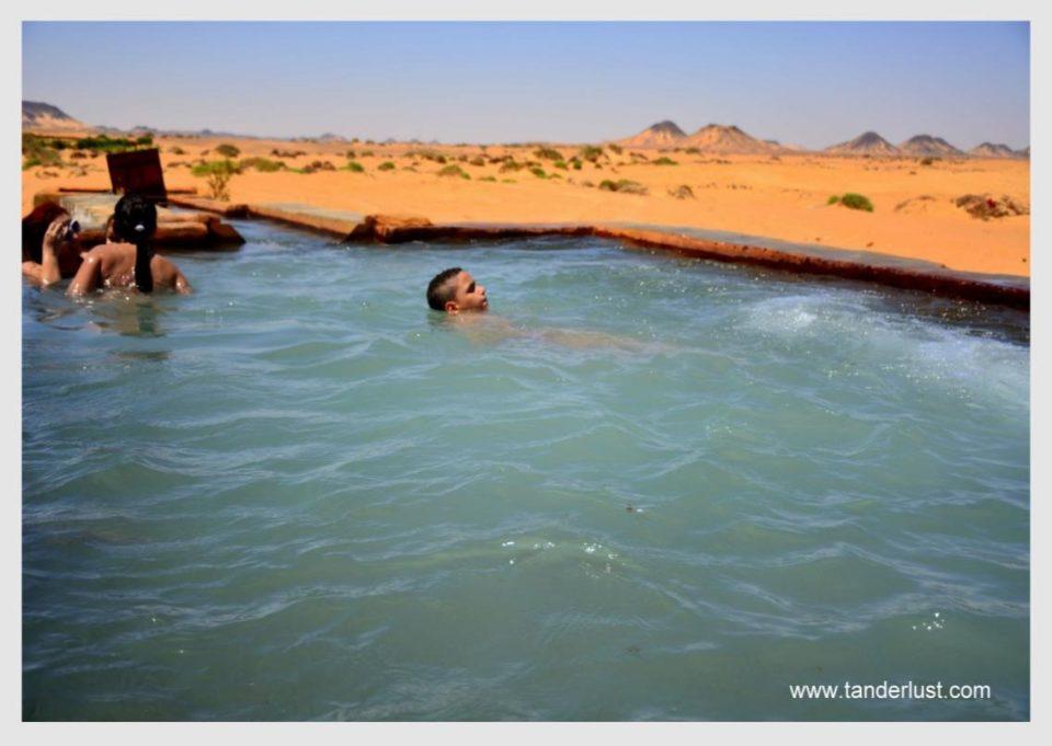oasis in the Egyptian desert