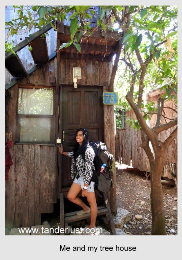 Bayrams tree house olympos antalya