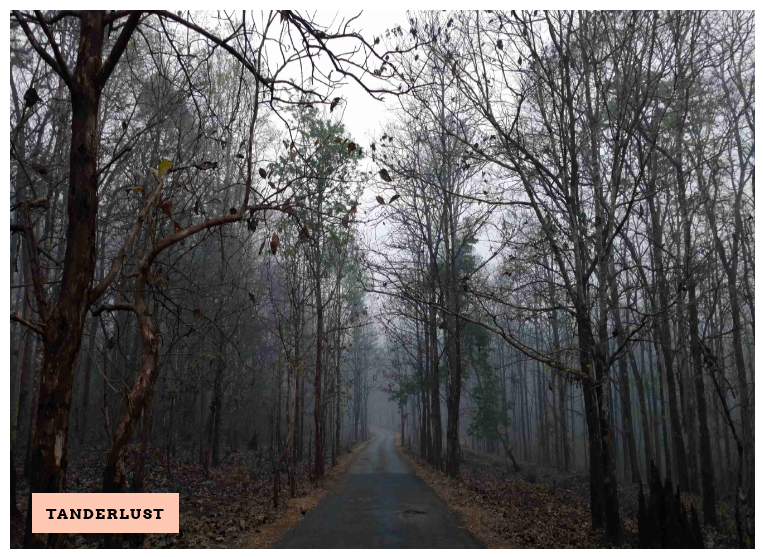 Dandeli should be your next adventure destination